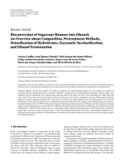 Bioconversion of Sugarcane Biomass into Ethanol.pdf
